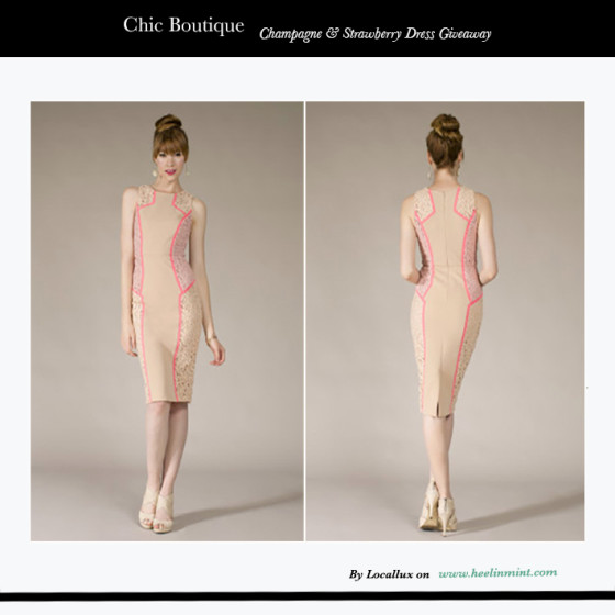 Mint Giveaway: Champagne and Strawberry Dress